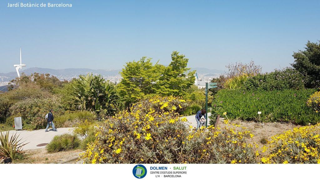 Jardín Botánico de Barcelona en Primavera. Foto de DOLMEN SALUT