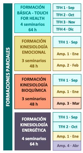 Formaciones de Kinesiología Emocional, Kinesiología Bioquímica, Kinesiología Energética