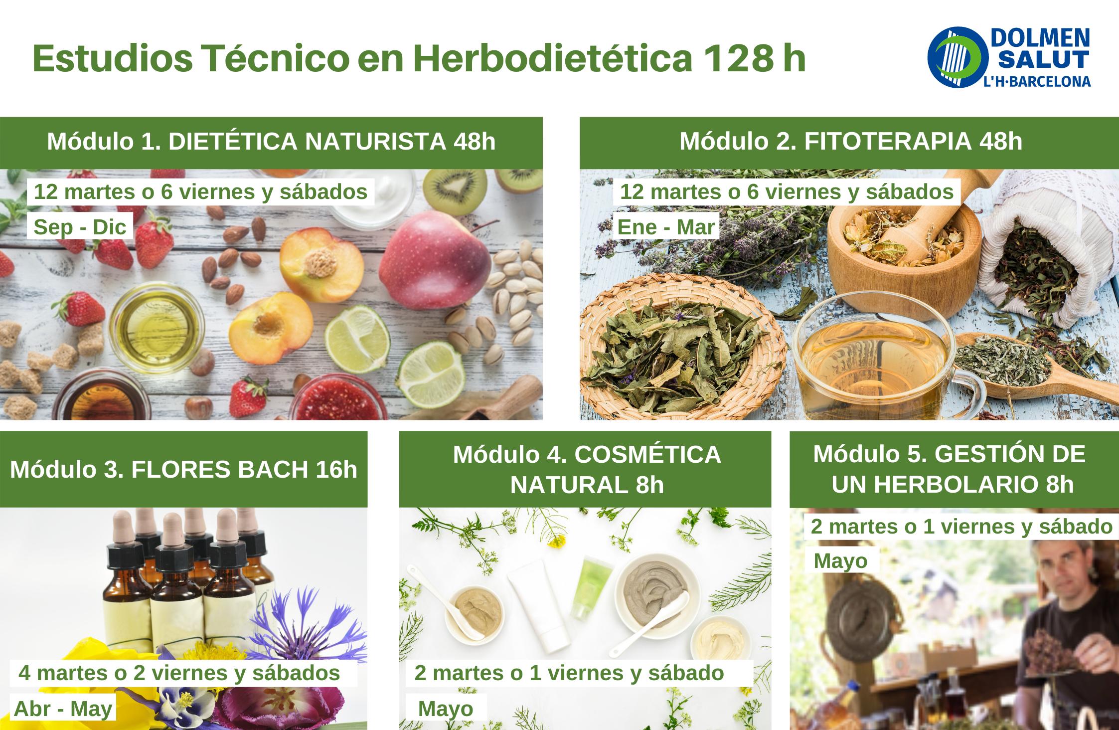 El curso de Técnico en Herbodietetica en DOLMEN SALUT Barcelona está formado por 5 módulos: Dietética Naturista, Fitoterapia, Flores de Bach, Cosmética Natural y Gestión de un Herbolario