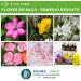Remedio Rescate de Flores de Bach